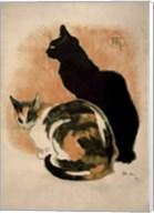 Two Cats Fine-Art Print