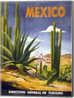 Mexico Cactus Fine-Art Print