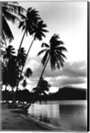 Dreaming of the South Seas, Society Islands, French Polynesia Fine-Art Print