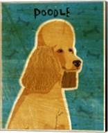 Apricot Poodle Fine-Art Print