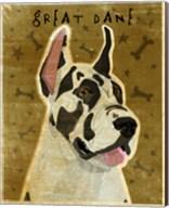 Harlequin Great Dane 1 Fine-Art Print