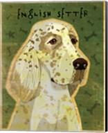 English Setter Fine-Art Print
