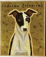 Italian Greyhound - Black and White Fine-Art Print