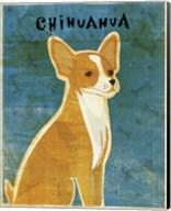 Chihuahua (red) Fine-Art Print