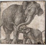Elephant 2 Fine-Art Print