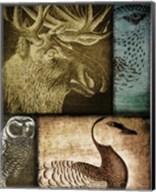 Hunting Season III Fine-Art Print
