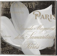 Fleurs Blanc II Fine-Art Print