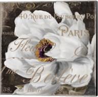 Fleurs Blanc III Fine-Art Print