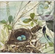 Nesting II Fine-Art Print