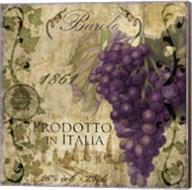 Vino Italiano II Fine-Art Print