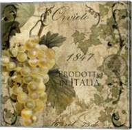 Vino Italiano IV Fine-Art Print