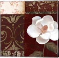 Flores Blancas IV Fine-Art Print