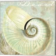 Turquoise Beach IV Fine-Art Print