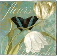 White Tulips II Fine-Art Print