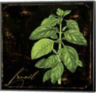 Black Gold Herbs IV Fine-Art Print