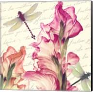 Dragonfly Morning I Fine-Art Print