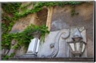 Spain, Granada Ivy growing on the walls of the Alhambra Fine-Art Print