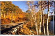 Tranquil Road with Fall Colors in New England Fine-Art Print