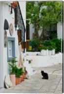 Street View with Black Cat, Manolates, Samos, Aegean Islands, Greece Fine-Art Print