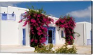 Greek Architecture, Mykonos, Greece Fine-Art Print
