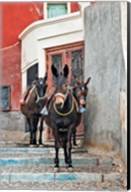 Mules, Imerovigli, Santorini, Greece Fine-Art Print