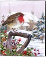 Robin 1 Fine-Art Print