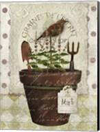 Herb Pot Mint Fine-Art Print