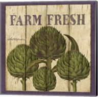 Farm Fresh Artichoke Fine-Art Print