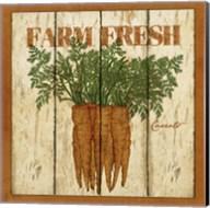 Farm Fresh Carrots Fine-Art Print