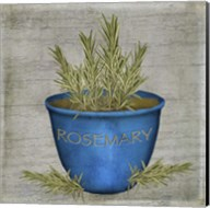 Herb Rosemary Fine-Art Print