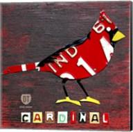 Indiana Cardinal Fine-Art Print