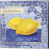 Citrons Fine-Art Print