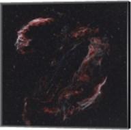 The Veil Nebula and its components Fine-Art Print