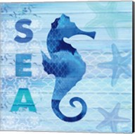 Sea Glass Seahorse Fine-Art Print