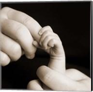 Baby Hand Holding Finger Fine-Art Print