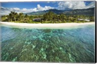 North Shore Reef Fine-Art Print