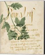 Herb Study V Fine-Art Print