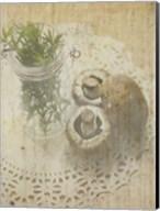 Herb Still Life IV Fine-Art Print