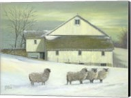 Sheep At Granough Fine-Art Print