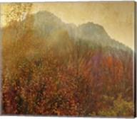 Autumn Colors 2 Fine-Art Print