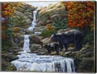 Black Bear Falls Fine-Art Print