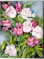 Light Pink And Dark Tulips Fine-Art Print