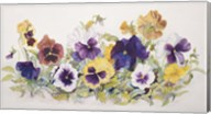 Pansies' Faces Fine-Art Print