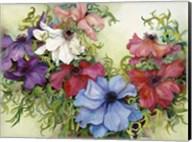 A Rainbow Of Anemones Fine-Art Print