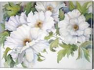 White Peonies Fine-Art Print