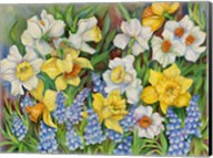 Daffodils And Grape Hyacinths Fine-Art Print