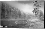 Yellowstone 1 Fine-Art Print