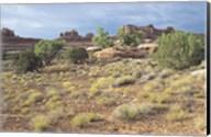 Canyonland 15 Fine-Art Print