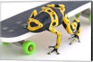 Yellow-banded Frog On Skateboard Fine-Art Print