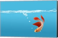 Goldfish Gone Swimming I Fine-Art Print